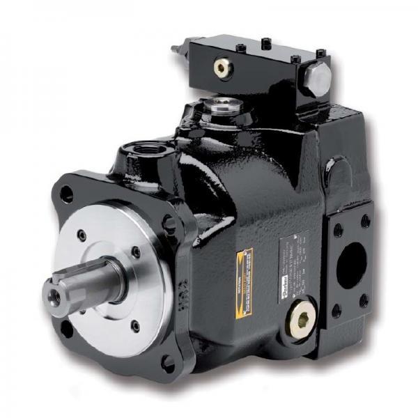 PAKER YB-E200 Piston Pump #1 image